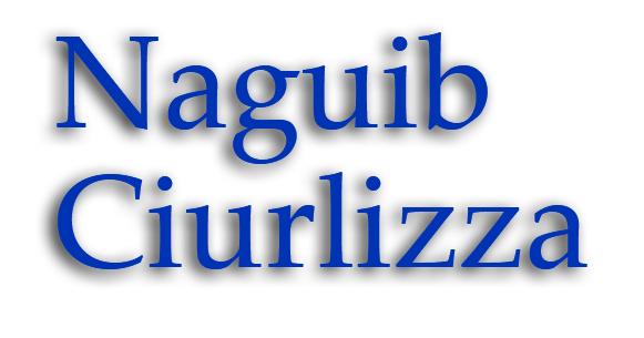 Lettering Naguib Ciurlizza